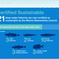 A decade delivering sustainability