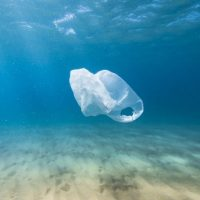 Participating in reducing plastic pollution