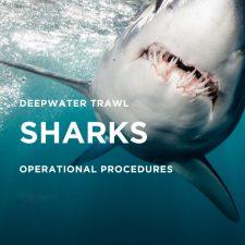 SHARKS v3.0